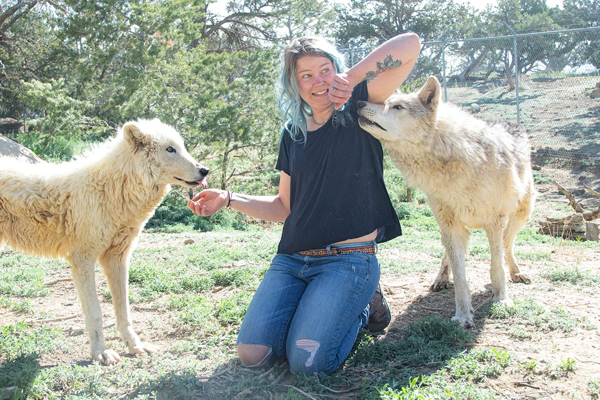 Jessica with wolfdog rescues, Riot and Cinder