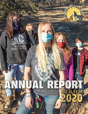 FY2020 Annual Report Cover